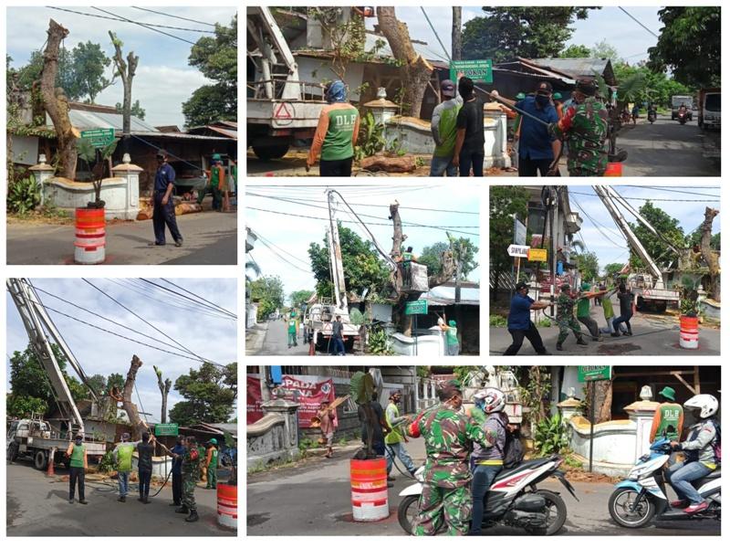 Pemotohan Pohon di Jl. Retno Dumilah