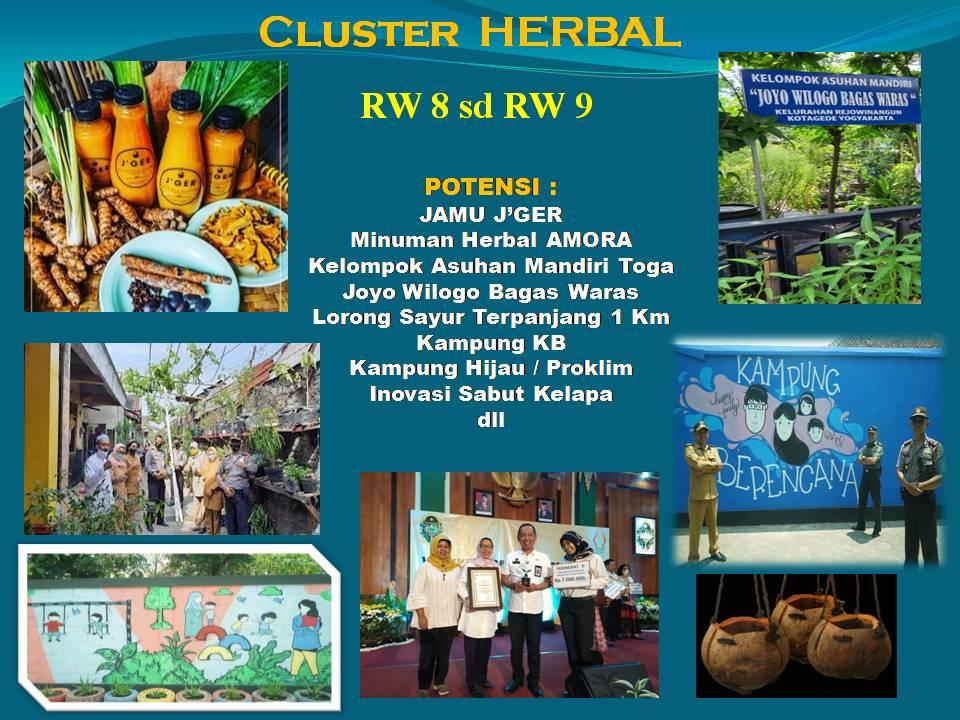 Cluster Herbal